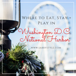 Where to Eat, Stay and Play in Washington D.C. National Harbor